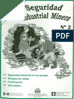 Seguridad Industrial Minera Nr2