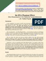 The DNA Phantom Effect_POPONIN2002