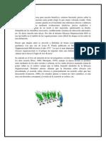 eficiencia organizacional.docx
