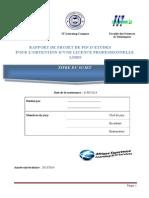 Model Rapport Pfe