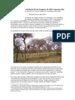 El Monte de Parque en El Litoral Del Rio Uruguay de 1815 a Nuestros Dias R Carrete