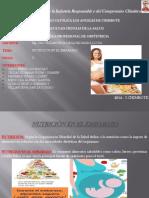 Presentación1 Nutrición en El Embarazo