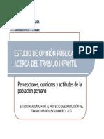 5_resumen de Estudio de Opinion Publica