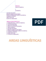 Areas Linguísticas Letras