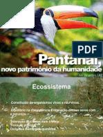 Apresentação - Pantanal -
