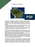 6 La Amazonía