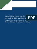 Wissenschaftlicher Beirat Langfristige Steuerung Der Versorgungssicherheit Im Stromsektor