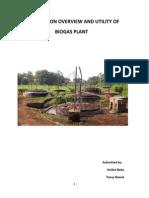 Biogas Plant Report