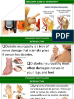 Effective Herbs for Diabetic Neuropathy