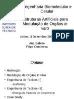 Ebc 1DEC 1510 EstruturasA Modulacao