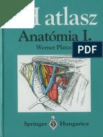 Werner Platzer SH atlasz Anatómia I. kötet