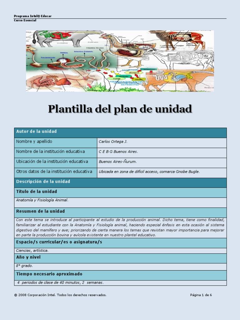 plantilla del plan de unidad