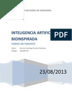 Inteligencia Artificial Bioinspirada_acuña Palomino