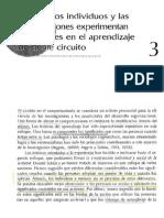 Argyris Capítulo 3 [1]