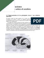 El Máxmo Rendimiento en El Ajedrez Capítulo 1 en Español