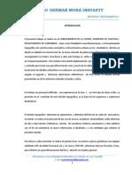 Informe La Fuente Zapatoca