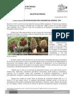 14/07/14 CÓMO PREVENIR LA INTOXICACIÓN POR CONSUMO DE HONGOS, SSO