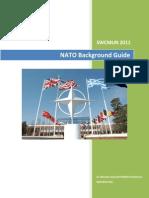 Nato Background Guide