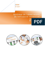 Synthese Observatoire Efficacite Collective Axxone-System 2014