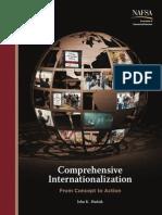 2011 Comprehen Internationalization