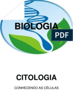 aulacitologia-091108142823-phpapp02
