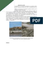 Contaminacion Del Suelo. L-A