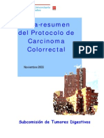 011 Protocolo CaCol Madrid