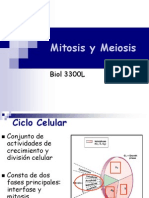 12. Xii Mitosis y Meiosis