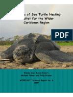 Atlas Sea Turtle Nesting Habitat