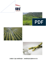 Thematic Report@Agro Fertilizers