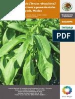 3877 El Cultivo de Stevia