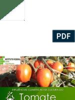 Infulencias Climaticas Do Tomaterio