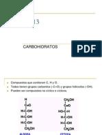 13_Carbohidratos