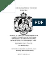 Analisis de Los Efectos Tributarios de La Posible Aplicacion Del Impuesto a Las Transferencias Gratuitas de Bienes Provenientes de Herencias en El Peru