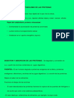 metabo  proteinico.ppt