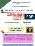 Seminario de Actualización - Capítulo Vi.