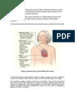 Enfermedad Coronaria en Hombres y Mujeres