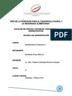 ADMINISTRACIÓN FINANCIERA II - RSU DECISIONES DE INVERSIÓN.doc
