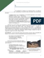 Perfil de Proyecto Omar