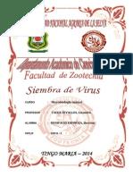 10 Siembra de Virus