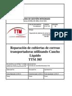 Procedimiento Aplicacion TTM 385 23.09.2013.pdf