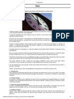 RH Automotive.pdf