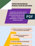 principios-pedagc3b3gicos