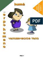 Vocabulario Ruso Con Imagenes