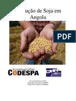 Producao Soja Angola