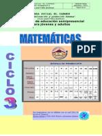 matematicas ciclo 3