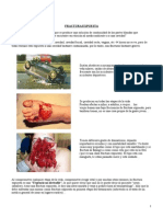 4a Clase de Traumatología - Fracturas Expuestas
