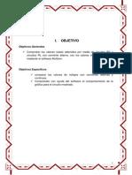 INFORME 8.docx
