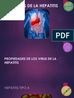 Virus de La Hepatitis