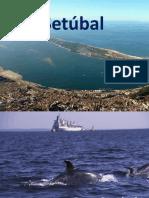 Apresentaçao Setubal